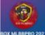 Box MLBB Pro 2021